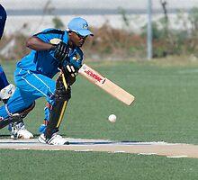 Cricket by Jeff Blanchard