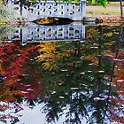 Fall Reflection by smw24