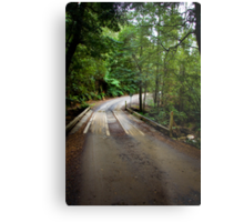 Wooden Bridge on Liffey Falls Track Metal Print