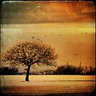 Free as a bird by Angelique Brunas