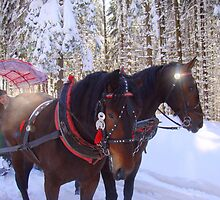Horses and snow sledge by Eugenio
