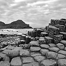 Giant's Causeway in black&white by Mariann Rea