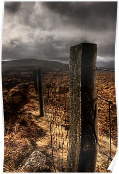 Fence by David Robinson