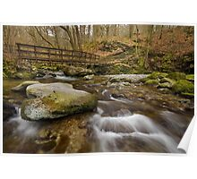 Footbridge in Stock Ghyll, Ambleside Poster