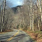 Driving Through The Smokies by dolfan1017