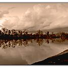 Murray River Reflections by Emjay01