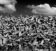 Woodpile by Laurie Search