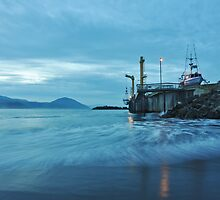 Commercial Fishing Dock by Randall Scholten