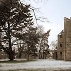 mallow castle in winter by michaelpaule