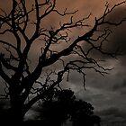 Dark clouds looming by Ian Reeley