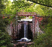 ~Water Under the Bridge~ by Terri~Lynn Bealle