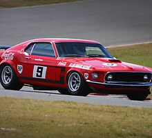 Moffat's Mustang by Joel  Haldane