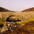 Surrender Bridge by Trevor Kersley