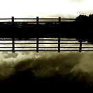 the cloud the fence (sepia) by georgeisme