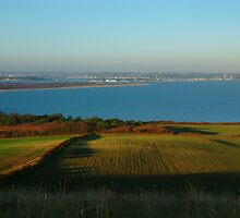 Studland Bay by coastalpix