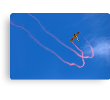 JellyBelly Aerobatics Canvas Print
