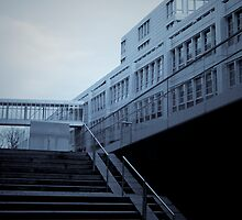 that cool germanic functionalism by pmacimagery