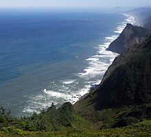 Oregon Coast by Matt Emrich