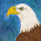 American Bald Eagle by janetmarston