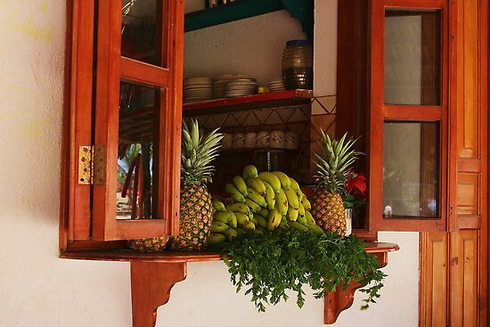Kitchen Window in Mexico by Barbara  Brown