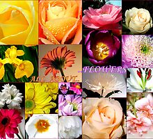 All About Flowers- My Favourite Things by naturelover