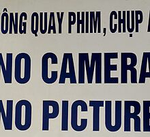 No Camera No Picture....no kidding by Bev Pascoe