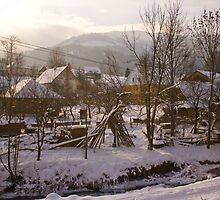 Village in Eastern Carpathians by Martulia