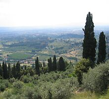 View from Fiesole by Jessica Perry  George