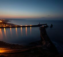 Whitby Harbour from East Cliff by Greg Artis