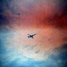 Airshow 1 by Dan Coates