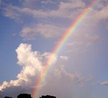 Rainbow & Rain by MMerritt