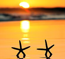 Sunset Starfish by Annette Blattman