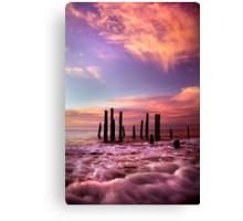 Wave Motion - Port Willunga. Canvas Print