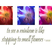 Flowers & Rainbows by Deborah McGrath