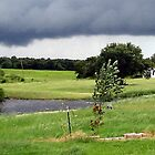 July Storms... by Sheila  Pasket
