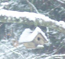 Birdhouse in the snow by Dawna Morton