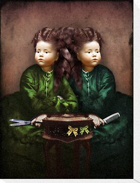 The hair affair by Catrin Welz-Stein