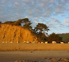 Dune at Sunset, Pacific Coast Highway by the2masks