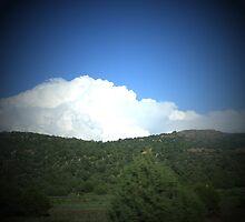 SKY, CLOUDS & GRASSES by gracestout2007