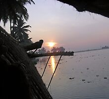 View of sunrise from the window of a houseboat in Kerala, India by ashishagarwal74