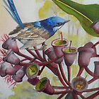 Blue Wren on Gum Nuts  (Sold) by Sandra  Sengstock-Miller