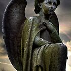 angel of sale 2 by Dale North Photography