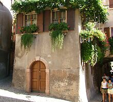 Treebeard at Malcesine by Ian Reeley