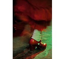 Flamenco flowing Photographic Print