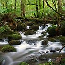 Cement Creek by WendyJC