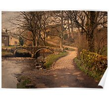 Twin Arched Pack-Horse Bridge in Colour. Poster