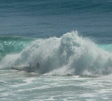 Surfing Burleigh Heads #2 by Virginia McGowan