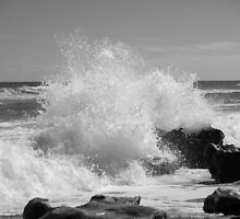 The Big Splash - BW by Donna Adamski