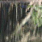 Reflections by ivanwillsau