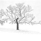 Appletree in Switzerland, Winter by clakics